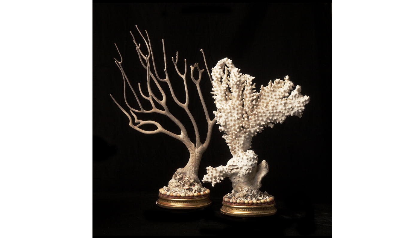 VICTORIAN CORALS ON ORIGINAL GILDED & GESSOED BASES